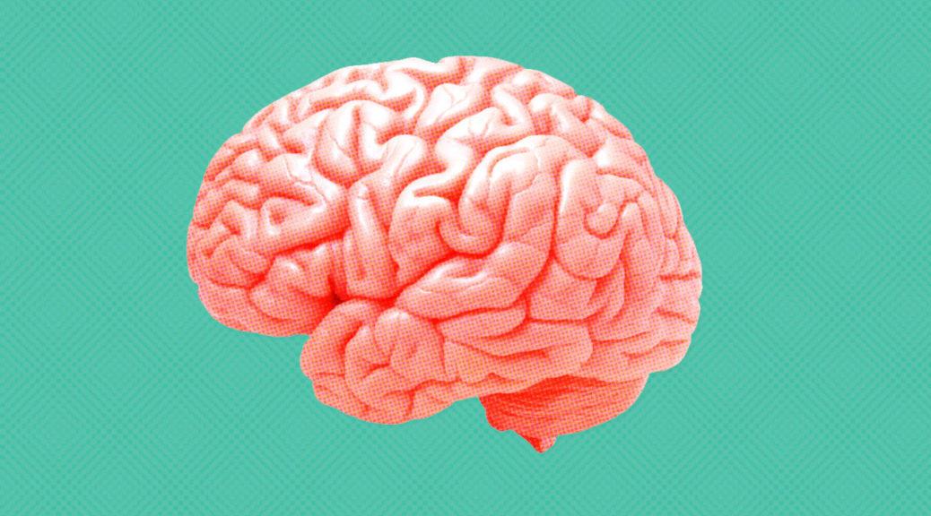 Airccelerate-008-Brain